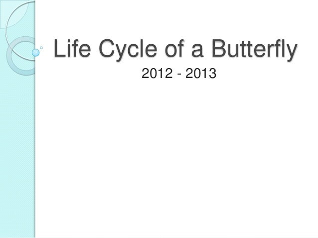 Life Cycle of a Butterfly2012 - 2013