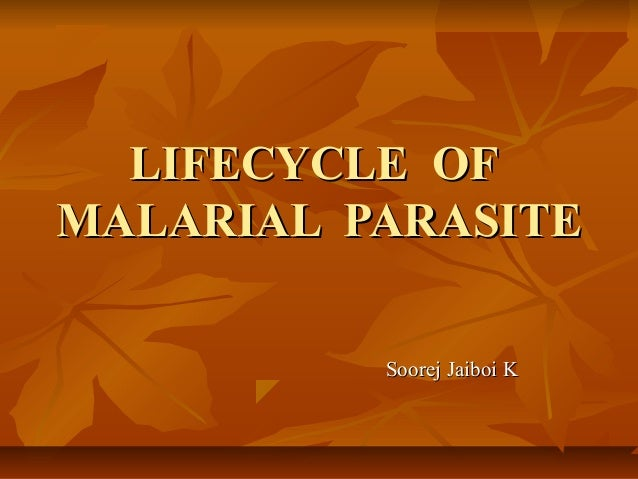 LIFECYCLE OFLIFECYCLE OF MALARIAL PARASITEMALARIAL PARASITE Soorej Jaiboi KSoorej Jaiboi K