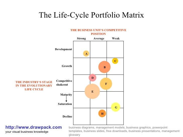 Life Cycle Portfolio Matrix Diagram