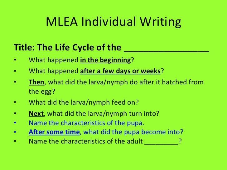 MLEA Individual Writing <ul><li>Title: The Life Cycle of the _________________ </li></ul><ul><li>What happened  in the beg...
