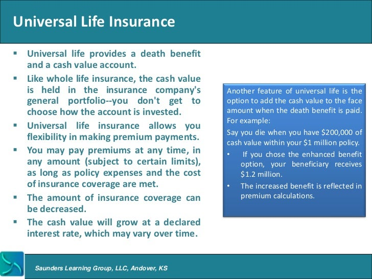 Universal Life Insurance Quote Prepossessing 24 Hour Auto Insurance Quotes  44Billionlater