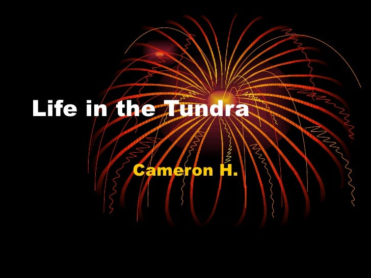 Life in the Tundra Cameron H.