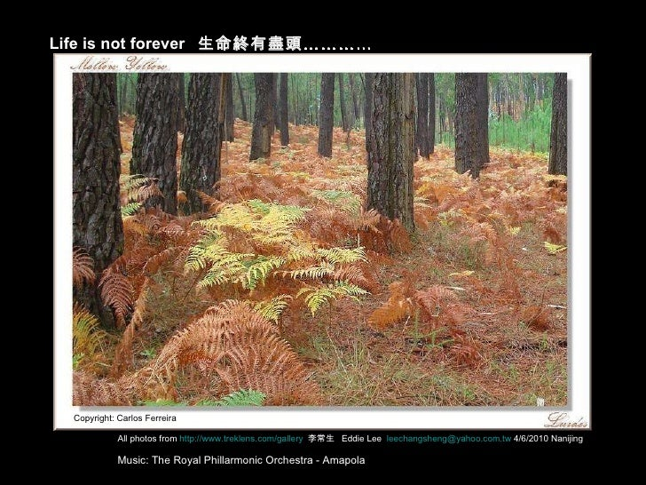 Life is not forever  生命終有盡頭………… All photos from  http://www.treklens.com/gallery   李常生  Eddie Lee  [email_address]  4/6/20...