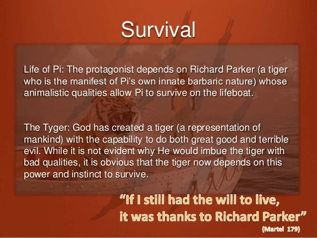 life of pi the tyger seminar 3 balance life of pi