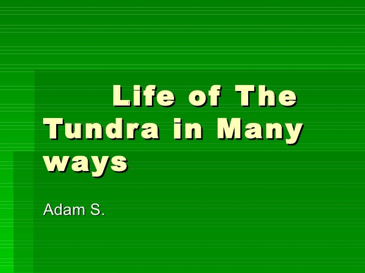 Life of The Tundra in Many ways Adam S.
