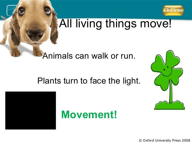 All living things move!  © Oxford University Press 2008  Animals can walk or run.  Plants turn to face the light.  Movemen...