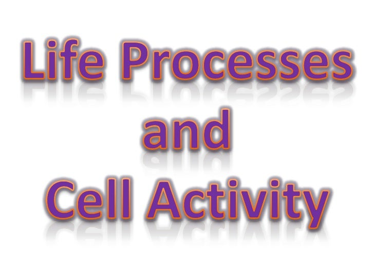 Life Processes and CellsLo –to be able to learn all the featuresof a plant cell.- To be able to understand the seven lifep...