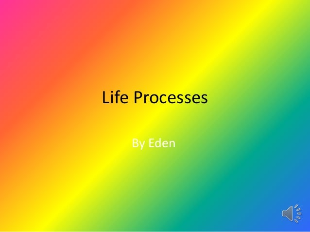 Life Processes   By Eden