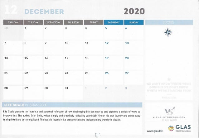 LifeScale December 2020 by Dani Saveker Slide 2