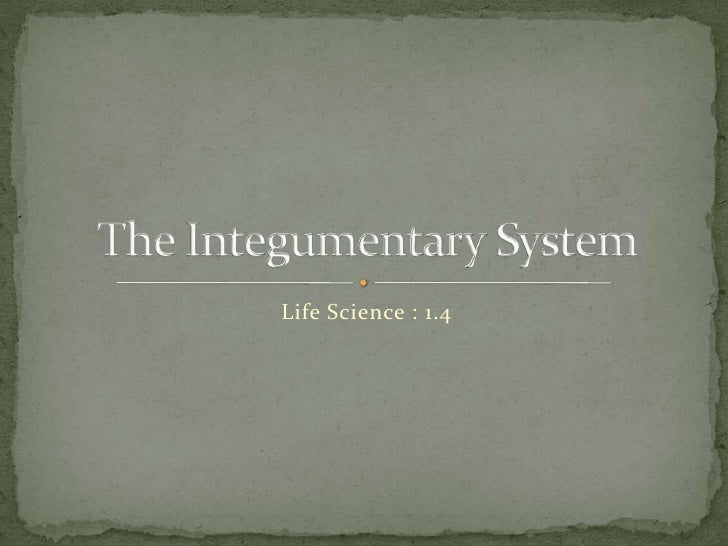 Life Science : 1.4<br />The Integumentary System<br />