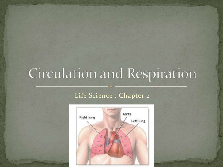 Life Science : Chapter 2<br />Circulation and Respiration<br />