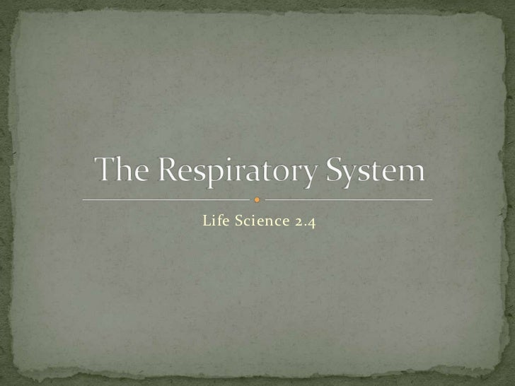 Life Science 2.4<br />The Respiratory System<br />