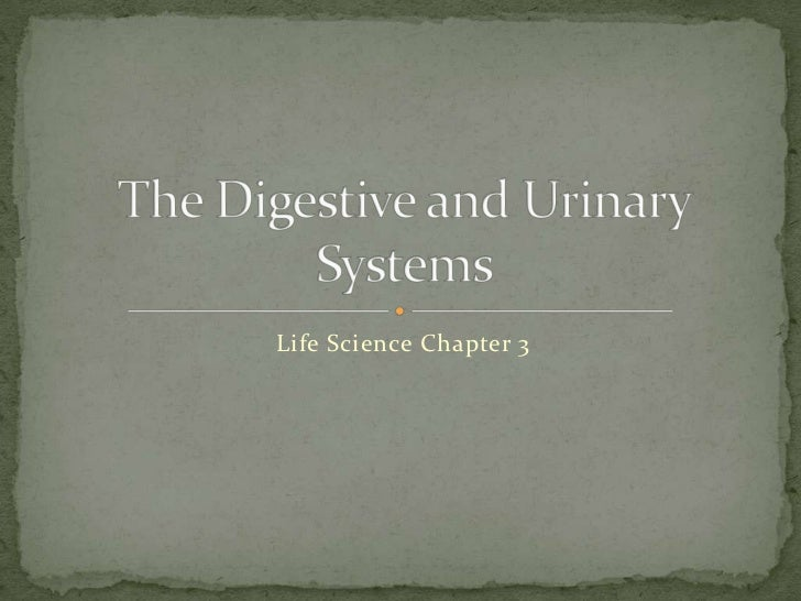 Life Science Chapter 3<br />The Digestive and Urinary Systems<br />