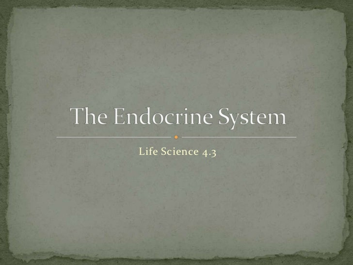 Life Science 4.3<br />The Endocrine System<br />