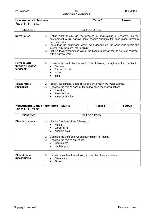 exam guideline grade 11 2014 open source user manual u2022 rh dramatic varieties com