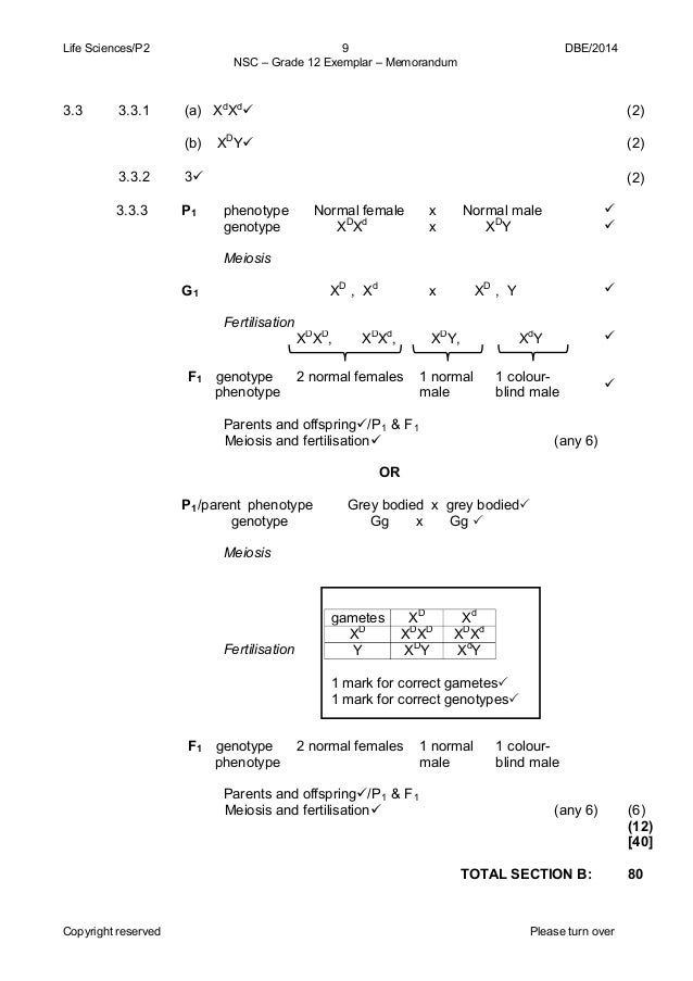 agricultural science grade 11 exemplar paper 2014