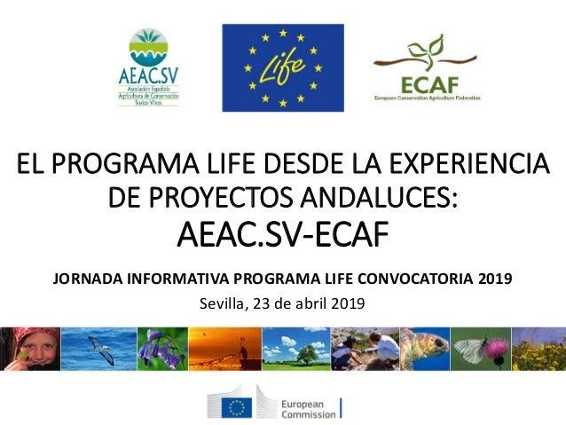 EL PROGRAMA LIFE DESDE LA EXPERIENCIA DE PROYECTOS ANDALUCES: AEAC.SV-ECAF JORNADA INFORMATIVA PROGRAMA LIFE CONVOCATORIA ...