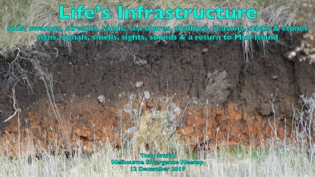 Life's Infrastructure soils, swamps, streams, sands, sea shores, shallows, seasons, sticks & stones signs, signals, smells...