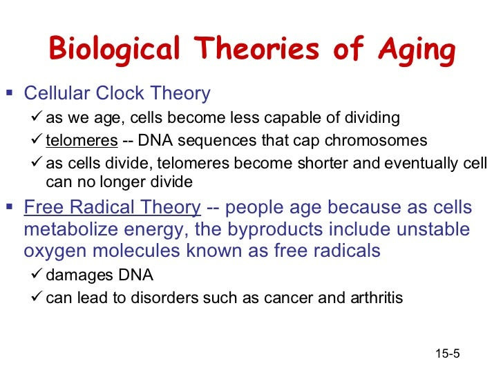 biological theory of aging Aging, health, and the environment: an ecological model chapter 2 39 introduction research in the epidemiology of aging addresses a variety of topics that.