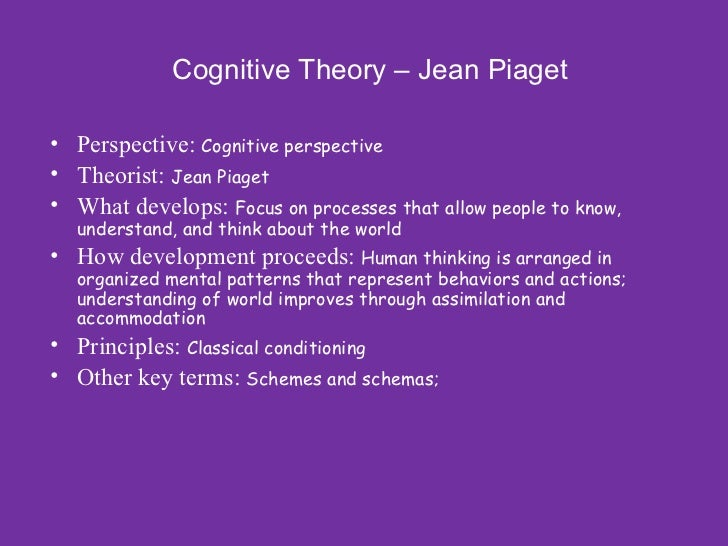 cognitive learning theory lecture essay