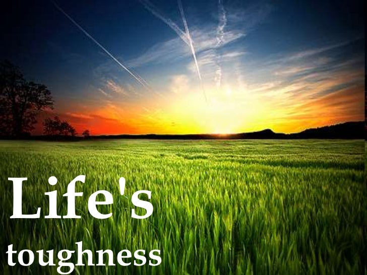 Life's <br />toughness <br />