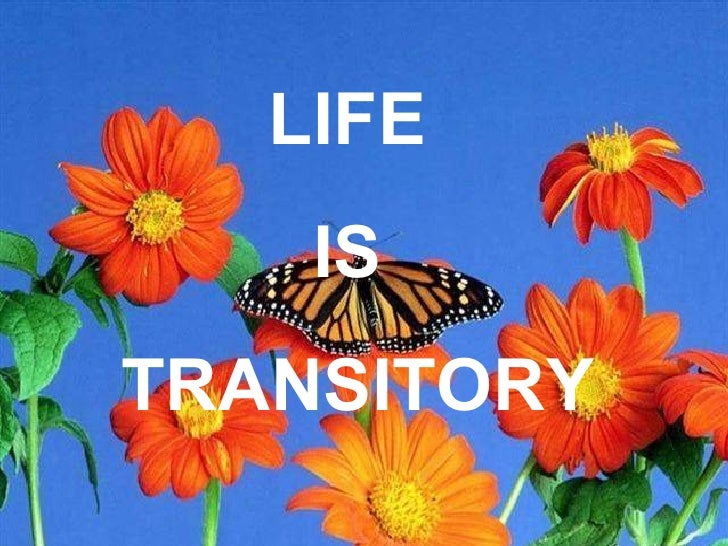 LIFE  IS  TRANSITORY