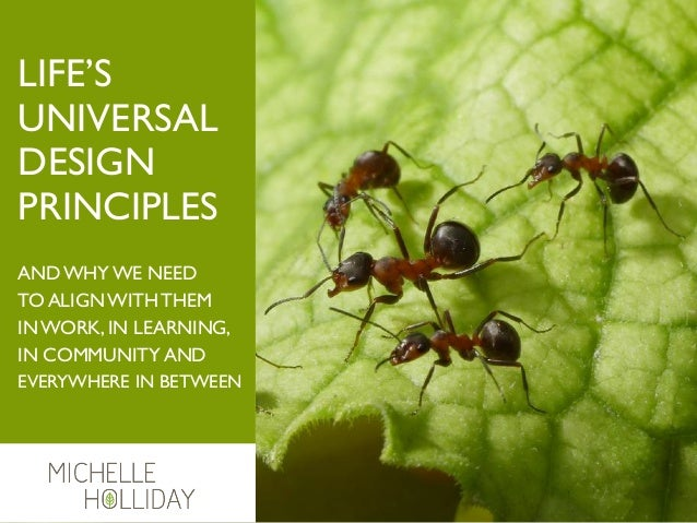 LIFE'S UNIVERSAL DESIGN PRINCIPLES ANDWHY WE NEED TO ALIGN WITH THEM IN WORK, IN LEARNING, IN COMMUNITY AND EVERYWHERE IN ...