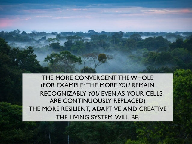 THE MORE CONVERGENT THE WHOLE (FOR EXAMPLE: THE MORE YOU REMAIN RECOGNIZABLY YOU EVEN AS YOUR CELLS ARE CONTINUOUSLY REPLA...