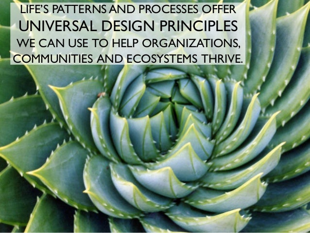 LIFE'S PATTERNS AND PROCESSES OFFER UNIVERSAL DESIGN PRINCIPLES WE CAN USE TO HELP ORGANIZATIONS, COMMUNITIES AND ECOSYSTE...