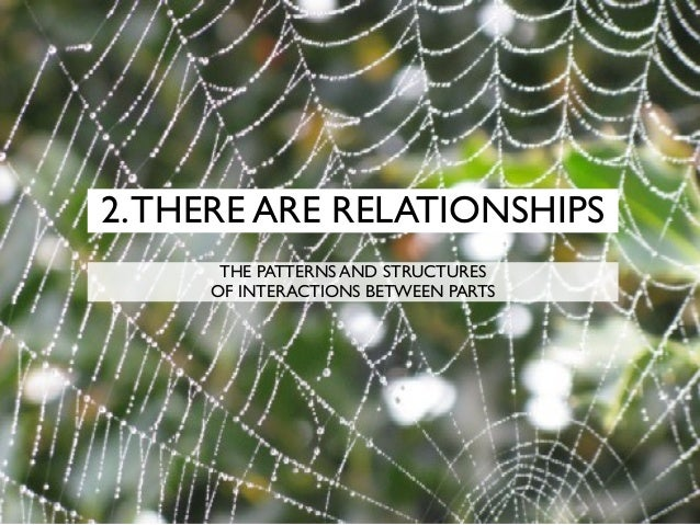 2.THERE ARE RELATIONSHIPS THE PATTERNS AND STRUCTURES OF INTERACTIONS BETWEEN PARTS