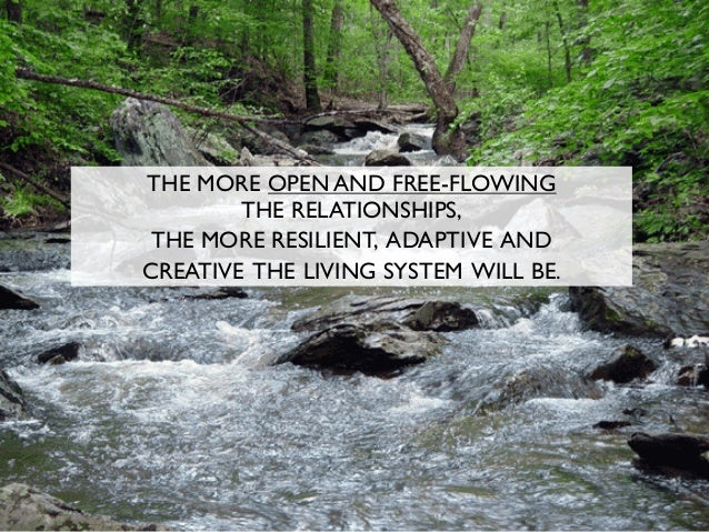 THE MORE OPEN AND FREE-FLOWING THE RELATIONSHIPS, THE MORE RESILIENT, ADAPTIVE AND CREATIVE THE LIVING SYSTEM WILL BE.