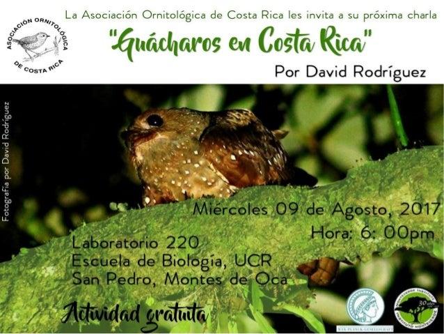 Lifetrack Oilbirds Costa Rica Primer informe David A. Rodríguez Enero, 2017