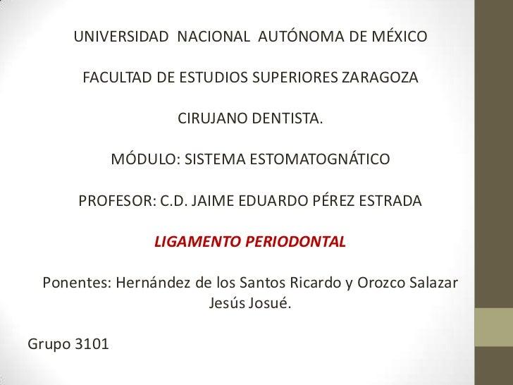 UNIVERSIDAD NACIONAL AUTÓNOMA DE MÉXICO      FACULTAD DE ESTUDIOS SUPERIORES ZARAGOZA                    CIRUJANO DENTISTA...