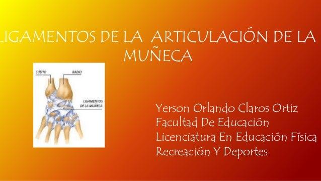LIGAMENTOS DE LA ARTICULACIÓN DE LA  MUÑECA  Yerson Orlando Claros Ortiz  Facultad De Educación  Licenciatura En Educación...