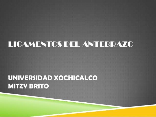 LIGAMENTOS DEL ANTEBRAZO  UNIVERSIDAD XOCHICALCO MITZY BRITO