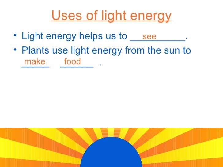 Uses Energy From The Sun To Make Food