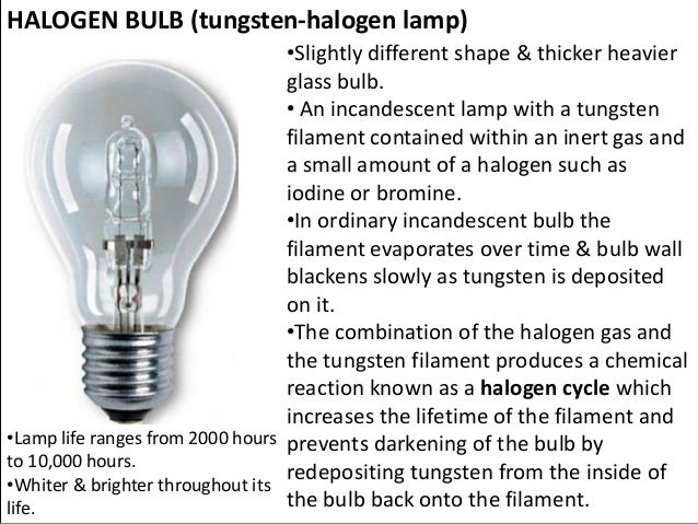 HALOGEN BULB (tungsten Halogen Lamp) ...