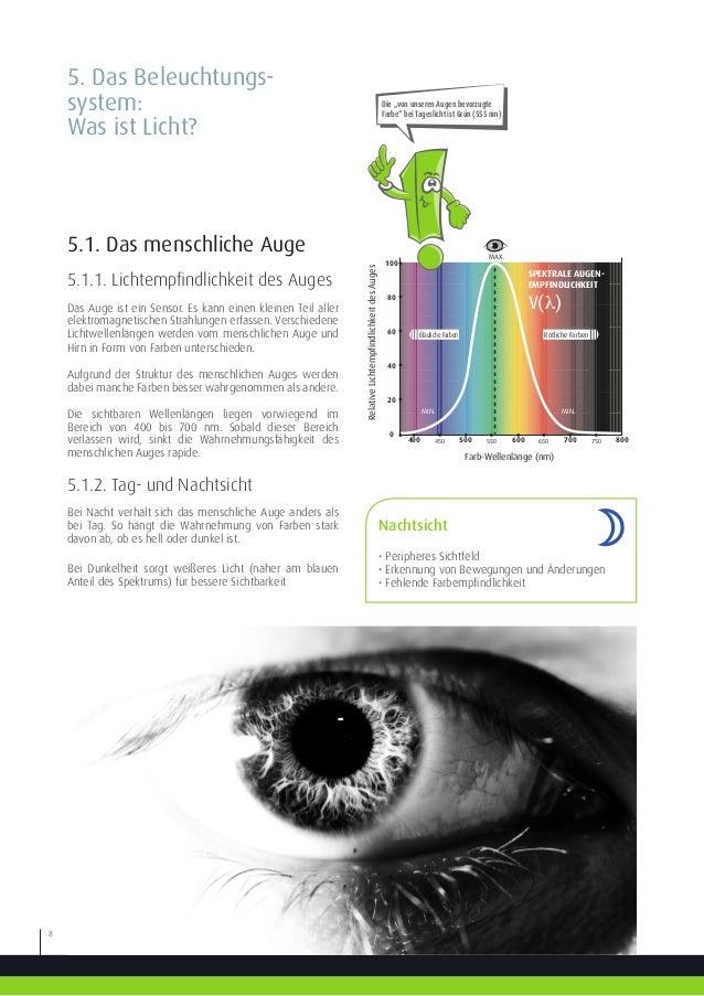 Nett Auge Anatomie Färbung Arbeitsblatt Galerie - Arbeitsblätter für ...