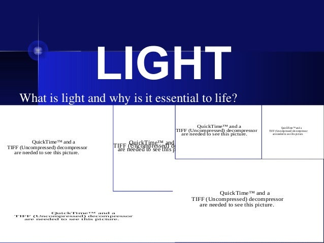 LIGHT     What is light and why is it essential to life?                                                                  ...