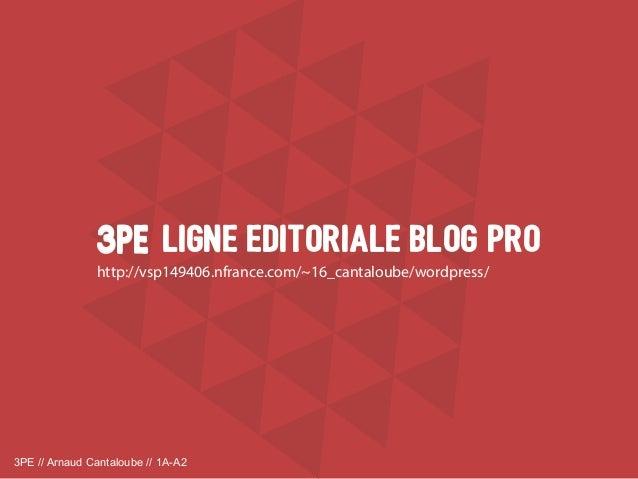 3PE // Arnaud Cantaloube // 1A-A2 LiGNE EDITORIALE BLOG PRO3PE3PE http://vsp149406.nfrance.com/~16_cantaloube/wordpress/