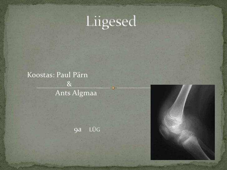<br />Liigesed<br />Koostas: Paul Pärn                      &               Ants Algmaa9a     LÜG<br />