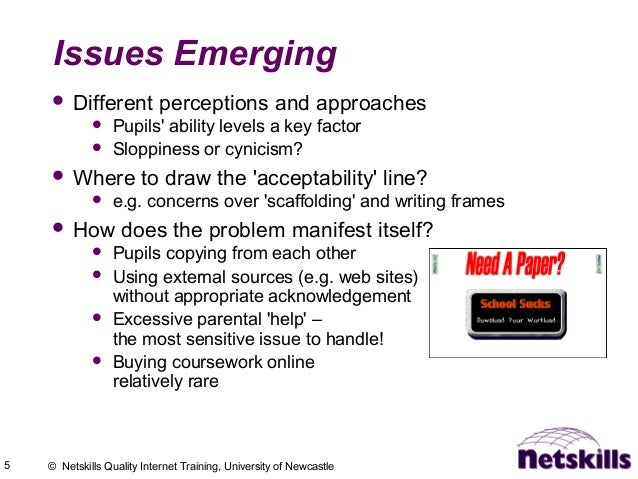 5 © Netskills Quality Internet Training, University of Newcastle Issues Emerging  Different perceptions and approaches  ...