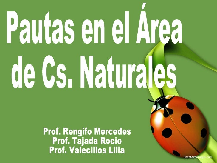 Pautas en el Área de Cs. Naturales Prof. Rengifo Mercedes Prof. Tajada Rocio Prof. Valecillos Lilia