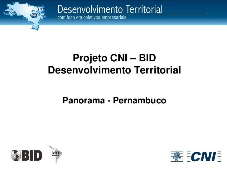 Projeto CNI – BIDDesenvolvimento Territorial  Panorama - Pernambuco