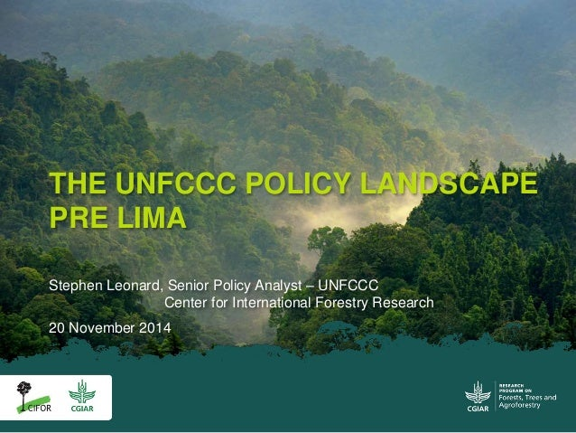 THE UNFCCC POLICY LANDSCAPE  PRE LIMA  Stephen Leonard, Senior Policy Analyst – UNFCCC  Center for International Forestry ...