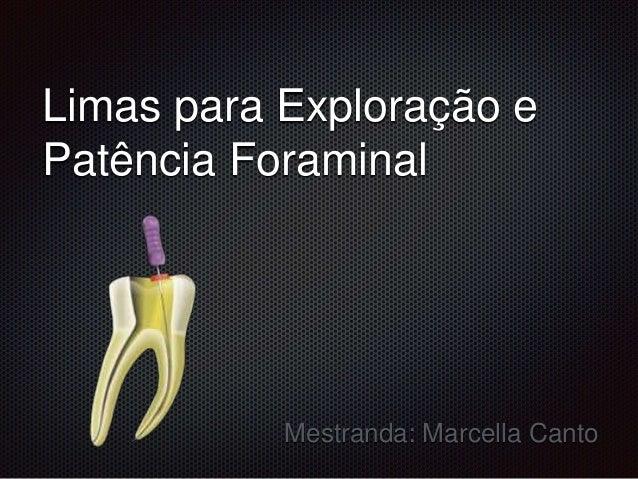 Limas para Exploração e Patência Foraminal Mestranda: Marcella Canto