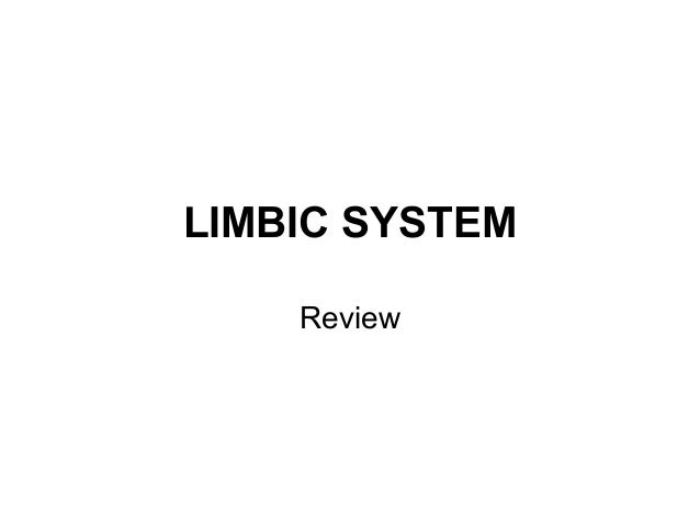 LIMBIC SYSTEM Review