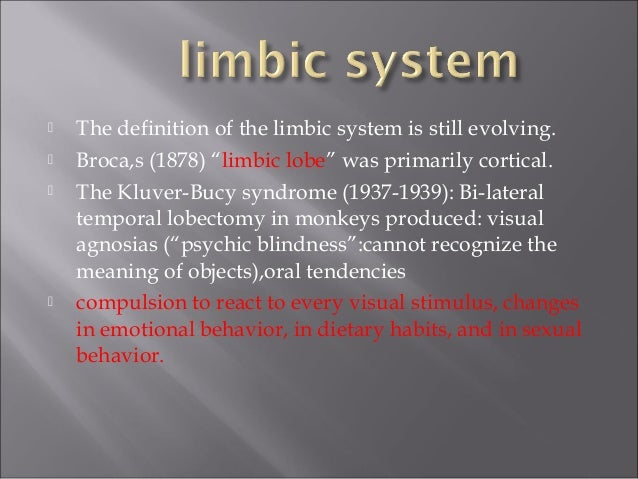 What is the limbic system of the brain?