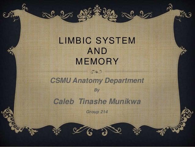 LIMBIC SYSTEM  AND  MEMORY  CSMU Anatomy Department  By  Caleb Tinashe Munikwa  Group 214