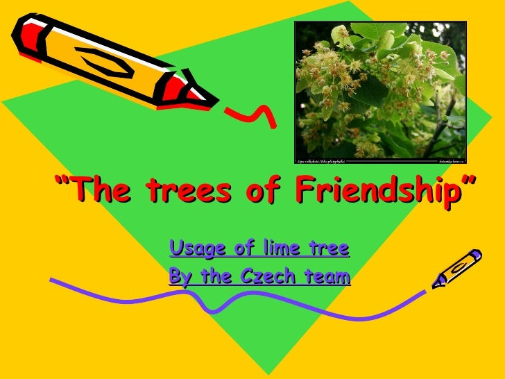 """"""" T he t ree s  of Friendship """" Usage of lime tree By the Czech team"""